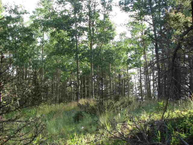 Lot 89 Elk Horn Drive, Angel Fire, NM 87710 (MLS #103526) :: The Chisum Realty Group