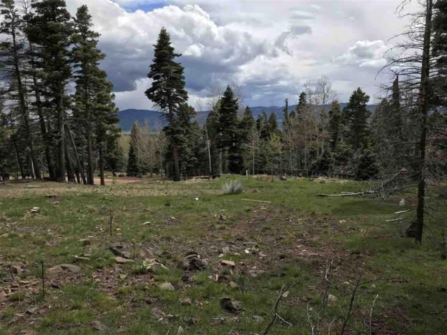 540 El Camino Real, Angel Fire, NM 87710 (MLS #103543) :: Angel Fire Real Estate & Land Co.