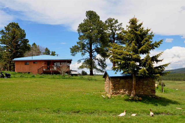 511 Acres County Rd B 2, Angel Fire, NM 87710 (MLS #103551) :: The Chisum Realty Group