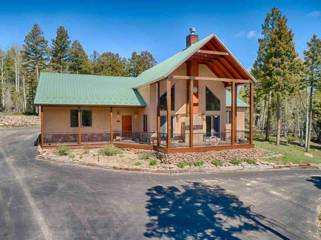 29 Vermejo Circle, Angel Fire, NM 87710 (MLS #103557) :: Page Sullivan Group | Coldwell Banker Mountain Properties