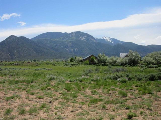 485 x Hondo Seco Road, Arroyo Seco, NM 87514 (MLS #103561) :: The Chisum Realty Group
