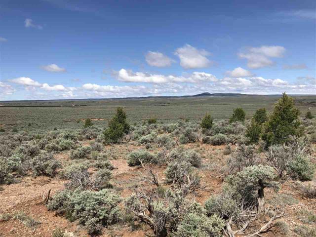 982 Samantha Road, Ranchos de Taos, NM 87557 (MLS #103563) :: The Chisum Realty Group