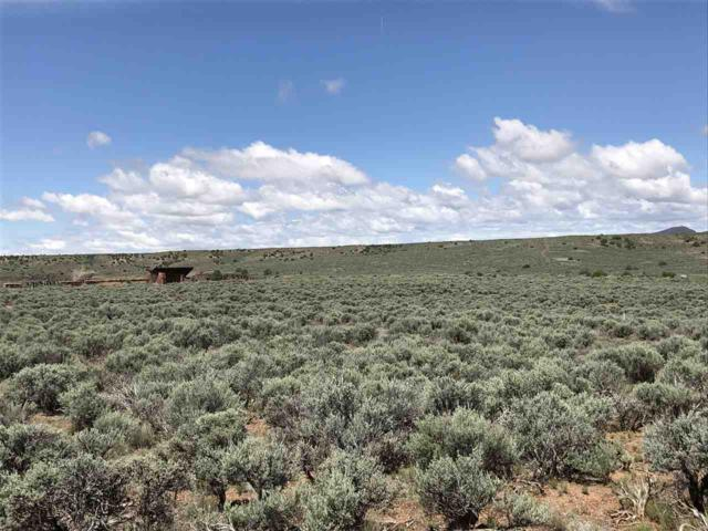 47 Paseo Del Barranca, Ranchos de Taos, NM 87557 (MLS #103564) :: Page Sullivan Group