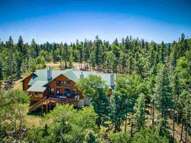 144 E Hidden Lake Circle, Black Lake or Angel Fire, NM 87710 (MLS #103573) :: The Chisum Realty Group