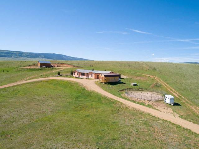 41 Snowflake Rd, Eagle Nest, NM 87718 (MLS #103575) :: Page Sullivan Group   Coldwell Banker Mountain Properties