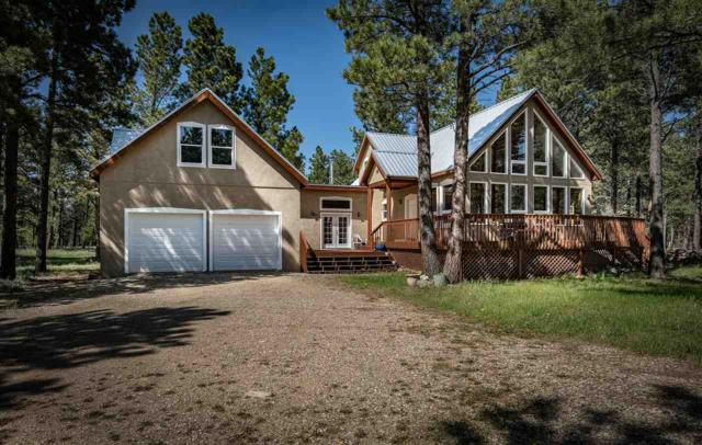 46 Susan Lane, Angel Fire, NM 87710 (MLS #103578) :: The Chisum Realty Group