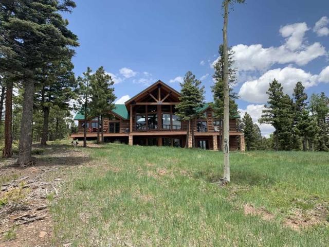Angel Fire, NM 87710 :: Chisum Realty Group