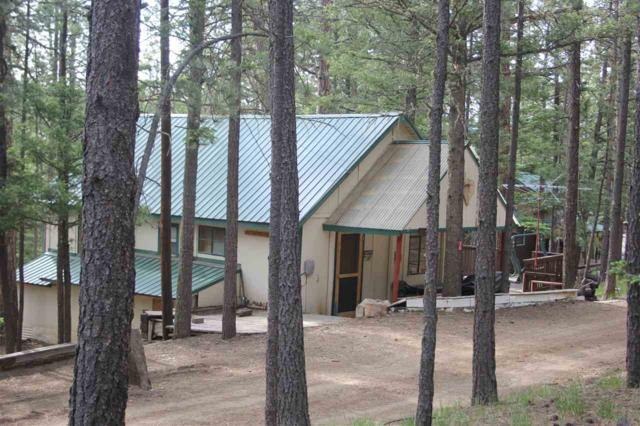 15 Road 11, Eagle Nest, NM 87718 (MLS #103584) :: Angel Fire Real Estate & Land Co.