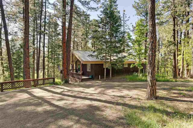 40 E Forest Drive, Rociada, NM 87742 (MLS #103592) :: Page Sullivan Group | Coldwell Banker Mountain Properties