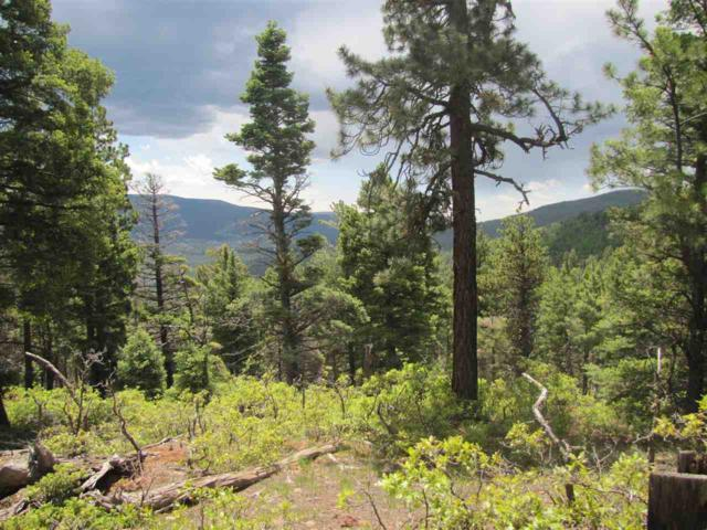 Lot 55 Palo Flechado Ridge Road, Angel Fire, NM 87710 (MLS #103598) :: The Chisum Realty Group