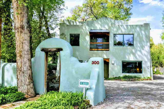 300 Kit Carson Road, Taos, NM 87571 (MLS #103601) :: Page Sullivan Group | Coldwell Banker Mountain Properties