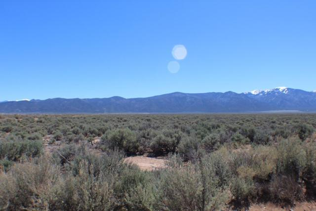 Tract 10 Cerro Area, Questa, NM 87556 (MLS #103604) :: Chisum Realty Group