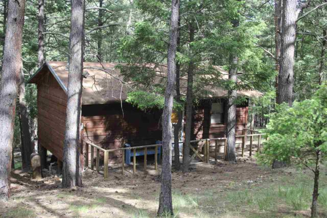 39 Road 11, Eagle Nest, NM 87718 (MLS #103615) :: Angel Fire Real Estate & Land Co.