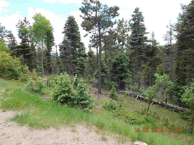 188 Taos Drive, Angel Fire, NM 87710 (MLS #103623) :: Angel Fire Real Estate & Land Co.