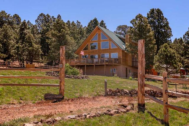 46 Saddleback Trail, Angel Fire, NM 87710 (MLS #103631) :: The Chisum Realty Group