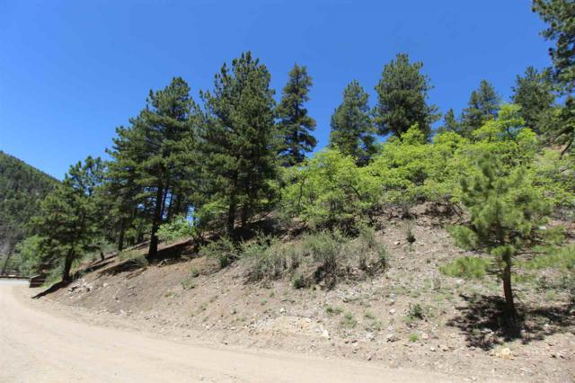 Lot 10 Wild Oak Village, Red River, NM 87558 (MLS #103644) :: Page Sullivan Group