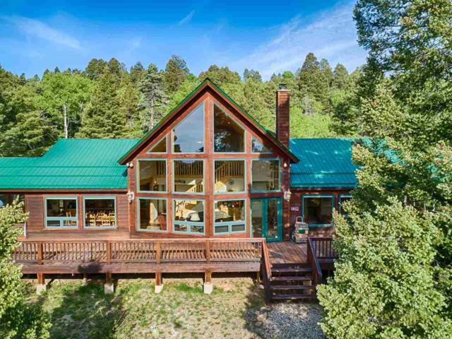 162 Brazos Dr, Angel Fire, NM 87710 (MLS #103650) :: Page Sullivan Group | Coldwell Banker Mountain Properties