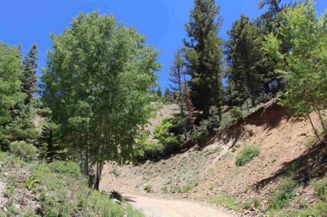 Lot 7 Wild Oak, Red River, NM 87558 (MLS #103652) :: Page Sullivan Group