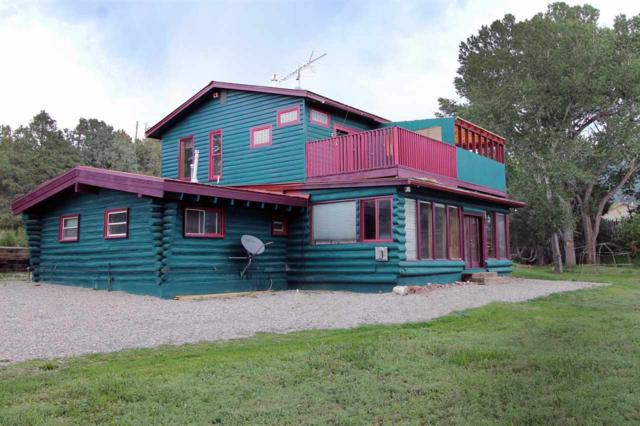 5 Medina Road, San Cristobal, NM 87564 (MLS #103669) :: The Chisum Realty Group