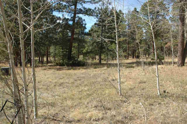 lot 15 Winter Wood Ct, Angel Fire, NM 87710 (MLS #103673) :: The Chisum Realty Group