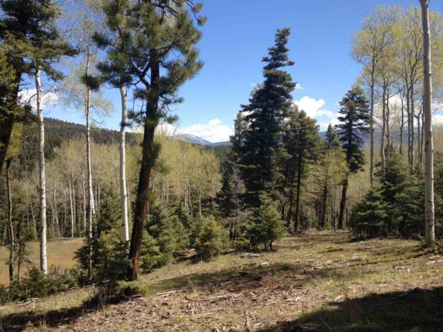 Lot 84 Taos Pines Ranch Road, Angel Fire, NM 87710 (MLS #103683) :: The Chisum Realty Group