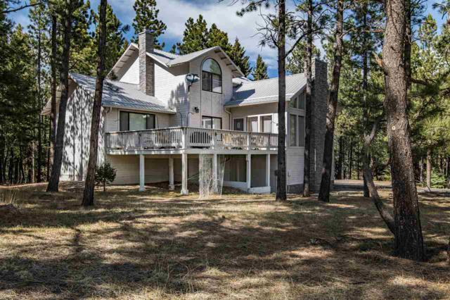 46 Lakeview Park Drive, Angel Fire, NM 87710 (MLS #103696) :: Page Sullivan Group | Coldwell Banker Mountain Properties