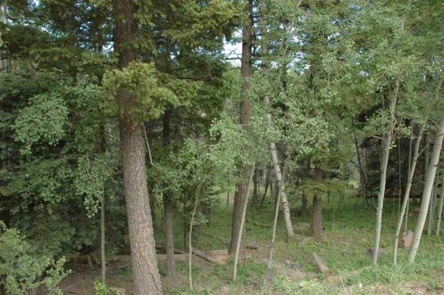 lot 561 El Camino Real, Angel Fie, NM 33980 (MLS #103700) :: Angel Fire Real Estate & Land Co.