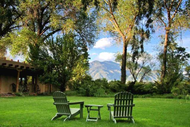 109 Mabel Dodge Lane, Taos, NM 87571 (MLS #103718) :: Page Sullivan Group | Coldwell Banker Mountain Properties