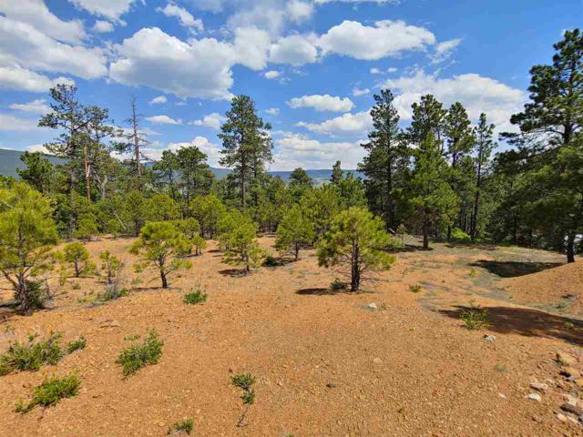 Lot 7 West Slope Acres, Eagle Nest, NM 87718 (MLS #103720) :: Page Sullivan Group   Coldwell Banker Mountain Properties