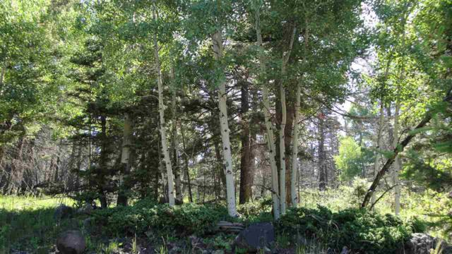Lot 1470A Cheerful Way, Angel Fire, NM 87710 (MLS #103723) :: Angel Fire Real Estate & Land Co.