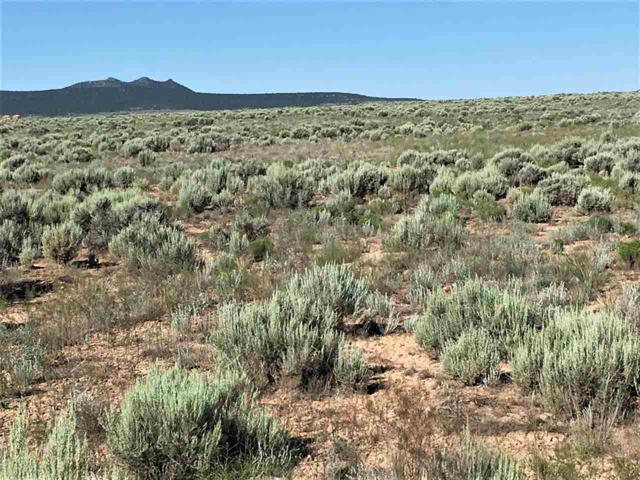 Lot 19 West Rim Road, El Prado, NM 87529 (MLS #103730) :: The Chisum Realty Group