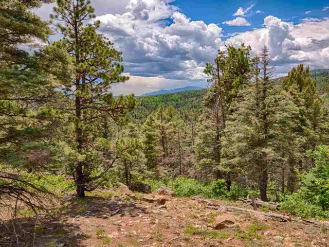 Sierra Blanca Lot 3, Angel Fire, NM 87710 (MLS #103731) :: The Chisum Realty Group