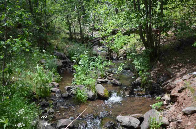 424 acres Nm Hwy 120, Black Lake/Ocate, NM 87710 (MLS #103735) :: The Chisum Realty Group