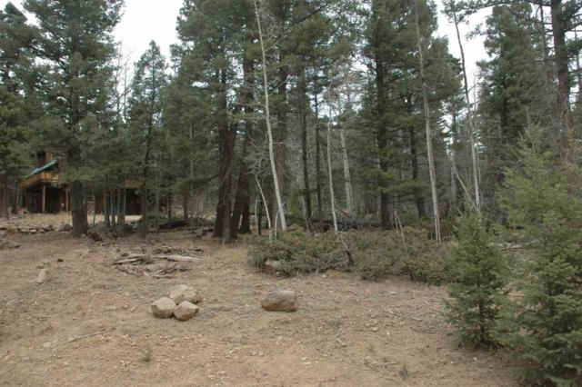 1494 Royal Ave, Angel Fire, NM 87710 (MLS #103737) :: Angel Fire Real Estate & Land Co.