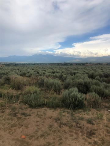 Adj to Cactus Flower Rd, Ranchos de Taos, NM 87557 (MLS #103741) :: Page Sullivan Group | Coldwell Banker Mountain Properties