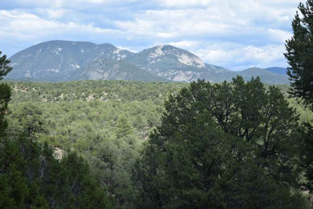 Canoncito Road Lot 7, Valdez, NM 87580 (MLS #103744) :: Page Sullivan Group | Coldwell Banker Mountain Properties