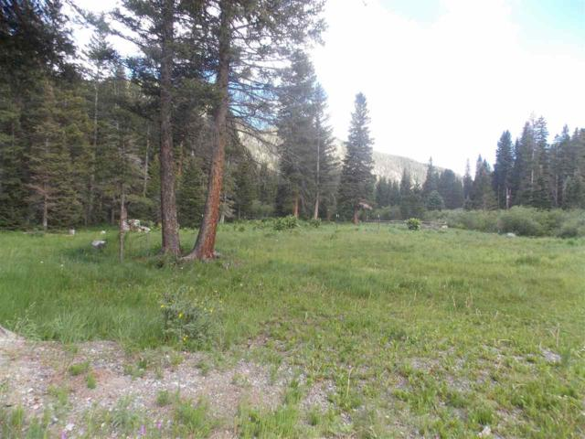 2 Beaver Road, Red River, NM 87558 (MLS #103747) :: The Chisum Realty Group