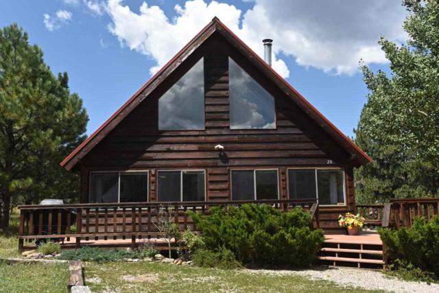 20 Preston Trail, Angel Fire, NM 87710 (MLS #103754) :: The Chisum Realty Group