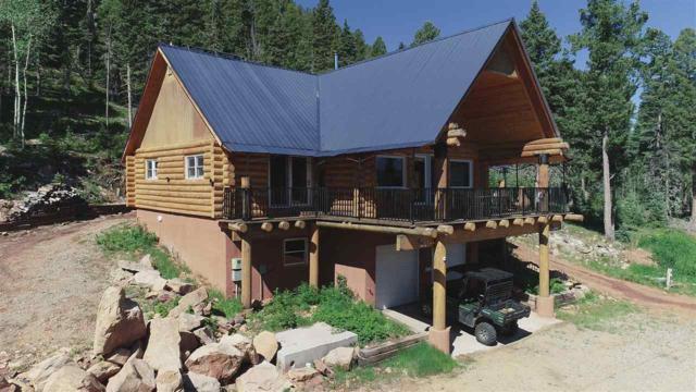15 E Bear Paw, Black Lake, NM 87722 (MLS #103766) :: Page Sullivan Group | Coldwell Banker Mountain Properties