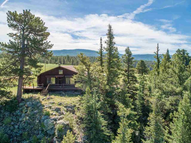 100 Resort Rd Black Lake, Angel Fire, NM 87710 (MLS #103775) :: Page Sullivan Group | Coldwell Banker Mountain Properties