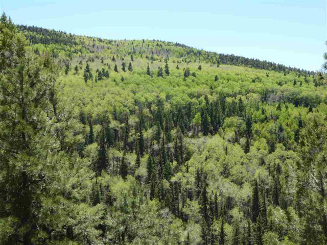 Lot 5 Apache Canyon, Taos, NM 87571 (MLS #103778) :: Angel Fire Real Estate & Land Co.