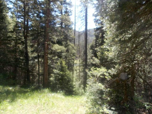 Lot 118 and 119 Wheeler Peak, Red River, NM 87558 (MLS #103779) :: Page Sullivan Group | Coldwell Banker Mountain Properties