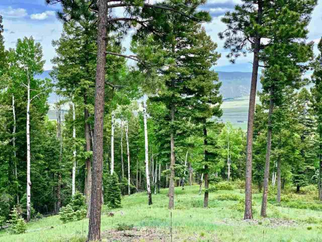 Lot 35 Taos Pines Ranch Rd, Angel Fire, NM 87710 (MLS #103792) :: Page Sullivan Group | Coldwell Banker Mountain Properties