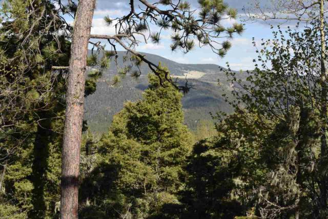 39 Brazos Drive, Angel Fire, NM 87710 (MLS #103793) :: The Chisum Realty Group