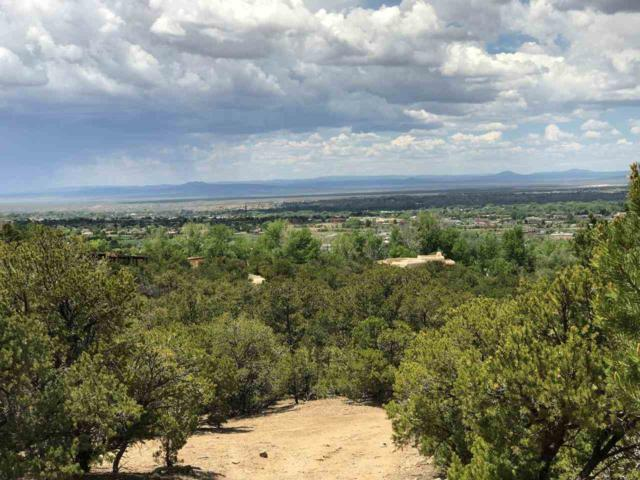 Paseo Bufalo, Taos, NM 87571 (MLS #103795) :: Page Sullivan Group | Coldwell Banker Mountain Properties