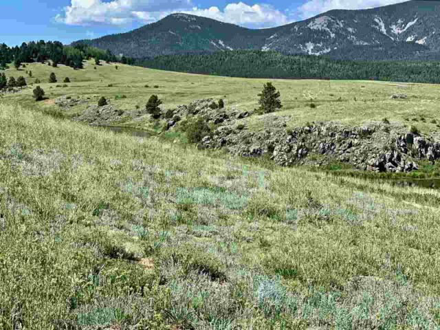 Lot 2 Acres Stricks Road, Angel Fire, NM 87710 (MLS #103802) :: The Chisum Realty Group