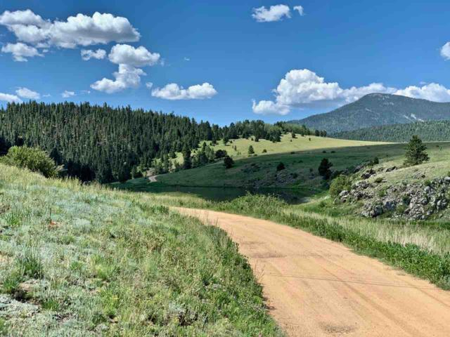 Lot 215 Road 4, Angel Fire, NM 87710 (MLS #103807) :: Page Sullivan Group | Coldwell Banker Mountain Properties