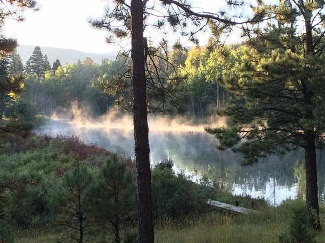 Lots 9 and 10 Clint Drive, Taos, NM 87571 (MLS #103815) :: Angel Fire Real Estate & Land Co.