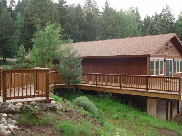 31 Back Basin, Angel Fire, NM 87710 (MLS #103818) :: Angel Fire Real Estate & Land Co.
