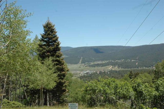 1170 Buena Vista, Angel Fire, NM 87710 (MLS #103823) :: Angel Fire Real Estate & Land Co.